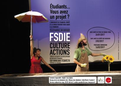Visuel FSDIE / bourse Culture-ActionS