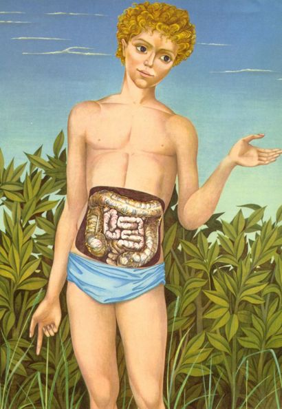 Illustration représentant un jeune homme debout avec les intestins en transparence.