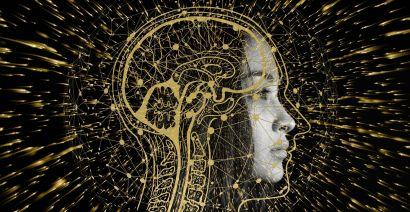 Quand la science stimule nos neurones