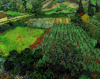 """Tableau """"Champ de coquelicots"""" de Vincent van Gogh"""
