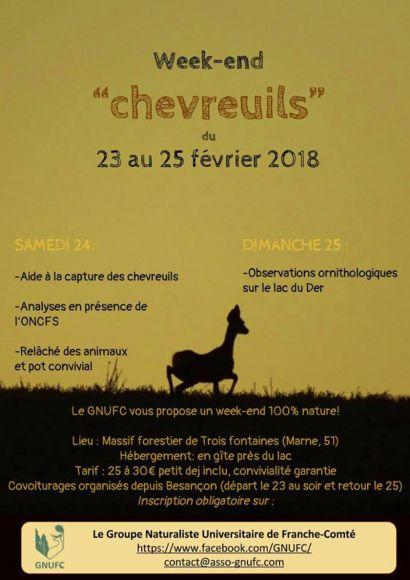 week-end-chevreuils