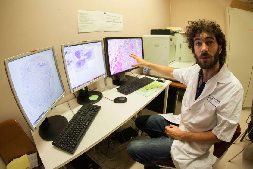 Franck Monnien montre trois écrans sur lesquels on voit des coupes histologiques.