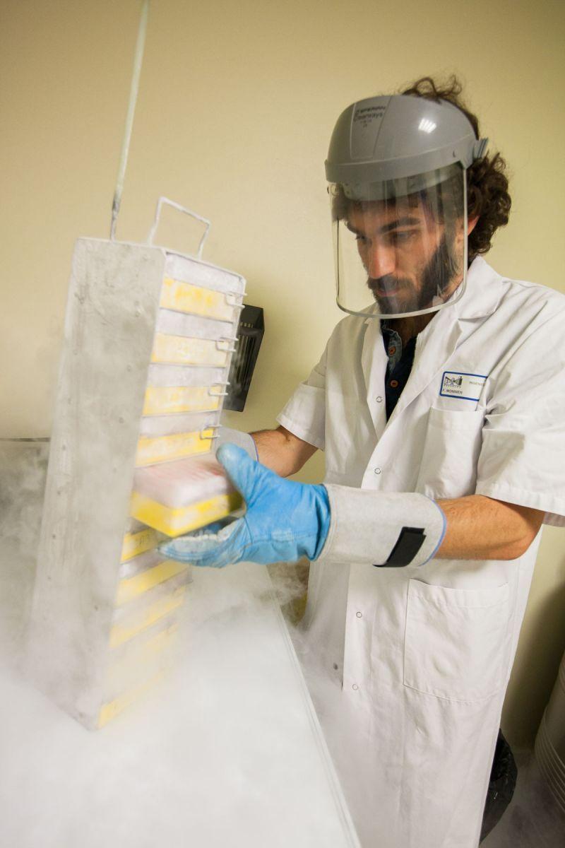 Franck Monnien, équipé d'une tenue de protection, retire une boite dans des vapeurs d'azote liquide.