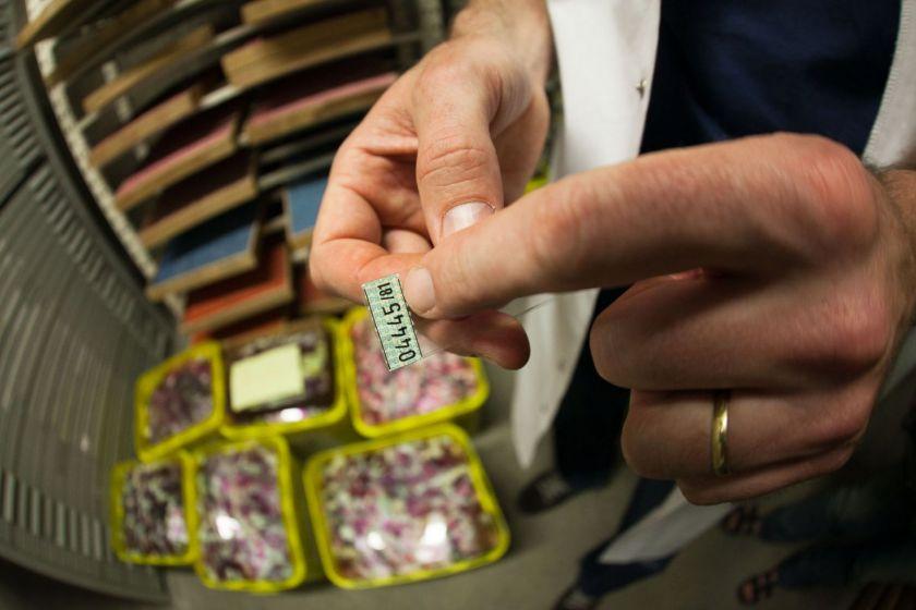 Deux mains en gros plan qui montrent un numéro sur une lame. En dessous, des bacs remplis de lames.