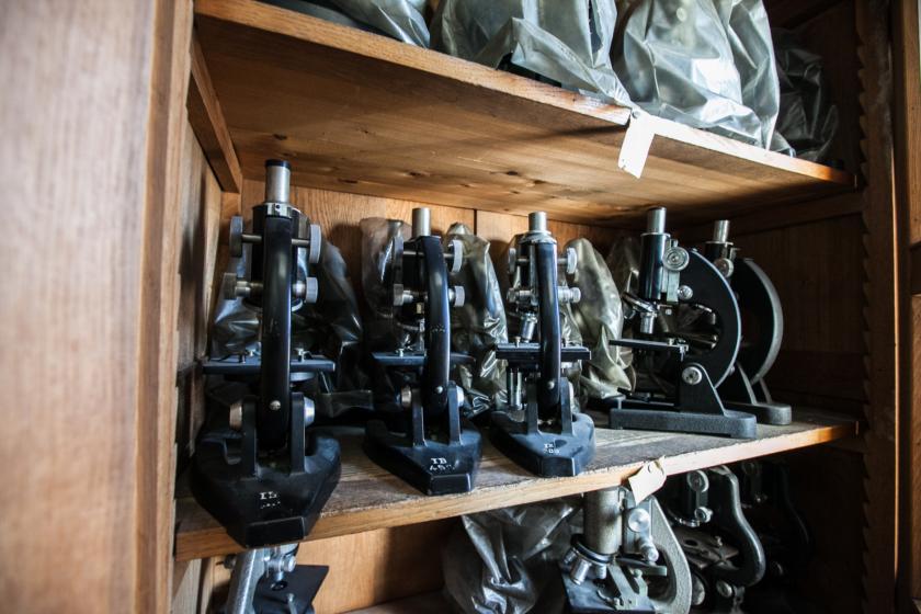 Une série de vieux microscopes dans un meuble en bois.