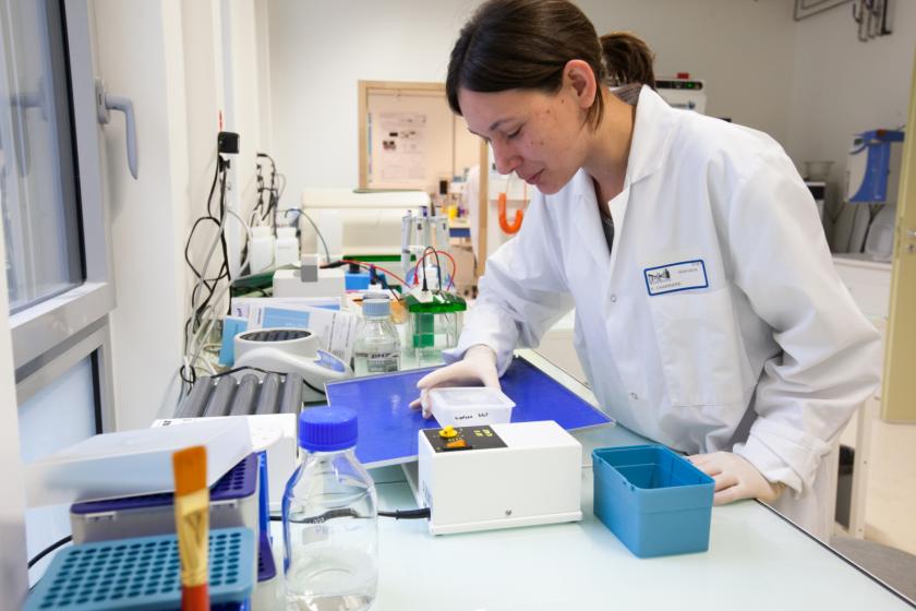 Dans un laboratoire, une jeune femme en blouse en train d'examiner le contenu d'une boite en plastique au dessus d'un appareil évoquant une sorte de balance.