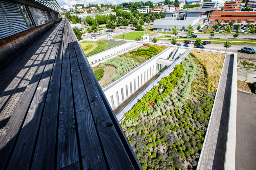 Vue du dessus d'une série de jardins-terrasses.