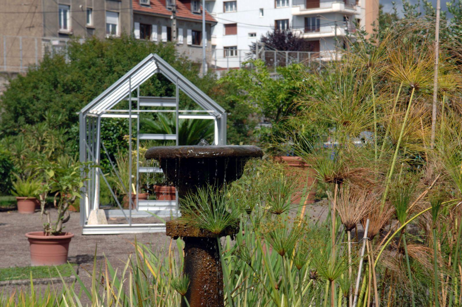 Identification de champignons l 39 actu de l 39 universit de franche comt - Petit jardin public lettres besancon ...