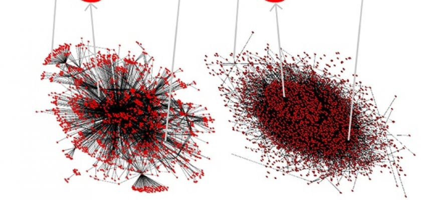 Illustration de réseaux de protéines reliées entre elles par des interactions physiques