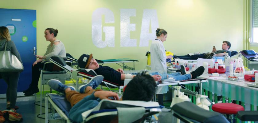 Collecte de sang en GEA