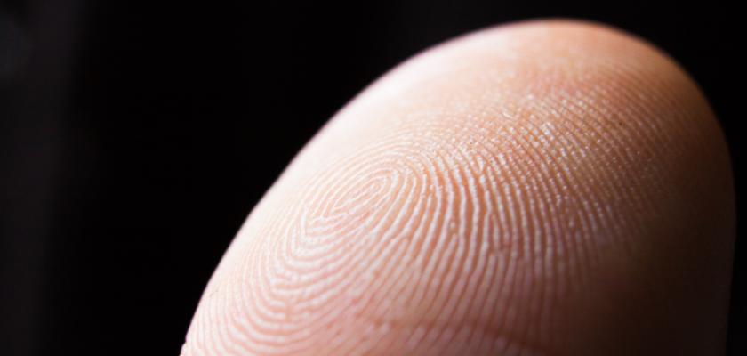 Un doigt en très gros plan avec les empreintes digitales.