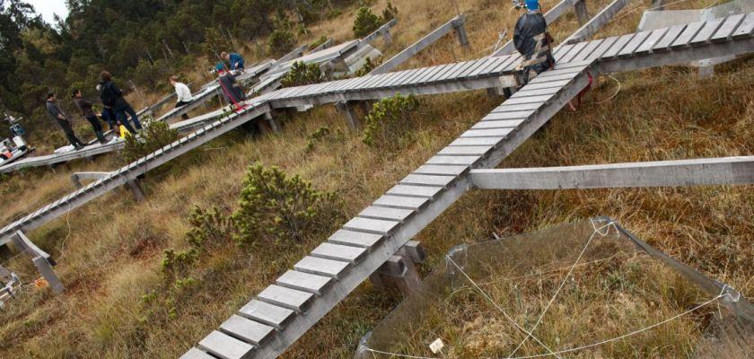 Une équipe de chercheurs de Chrono-environnement à la tourbière de Frasne