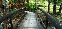 Pont en Thailande