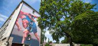 Vue de l'oeuvre sur le bâtiment de l'ESPE avec un arbre devant.