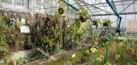 Serre du jardin botanique
