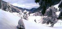 Photo de paysage montagneux enneigé