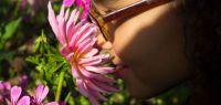 Une petite fille renifle une fleur