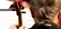 Un violoniste de dos.