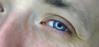 Un oeil bleu en gros plan