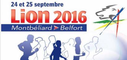 L'IUT participe au semi-marathon en relais du Lion 2016