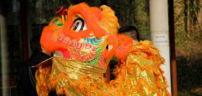 Marionnette - costume de dragon du nouvel an chinois