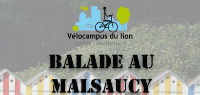 Balade au Malsaucy avec Vélocampus du lion: animations et bonne humeur