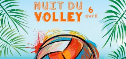Affiche Nuit du Volley 2017