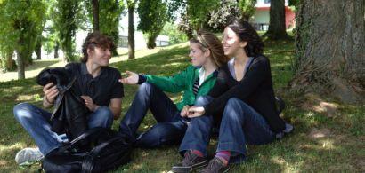 Des étudiants discutent sous un arbre sur le campus de la Bouloie