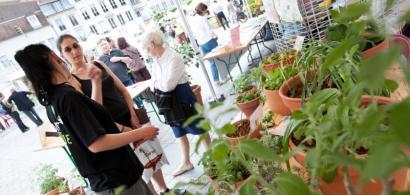 Les stands de la Cité des plantes