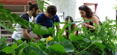 La MéMO met le campus de Montbéliard au vert!