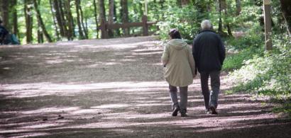 Un couple aux cheveux blancs de dos qui se promène dans un bois