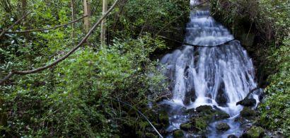 Cascade de la source d'Arcier