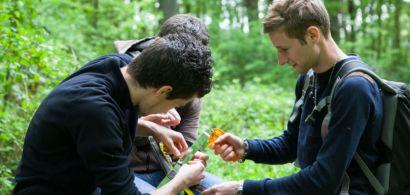 Trois étudiants dans la forêt s'activent et prennent des mesures.