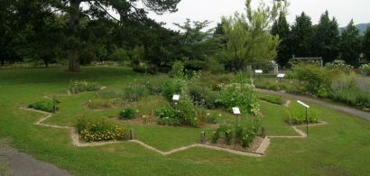 Vue du jardin botanique