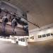 """L'exposition """"dans la gueule du Lion"""" au Gymnase-Espace culturel"""